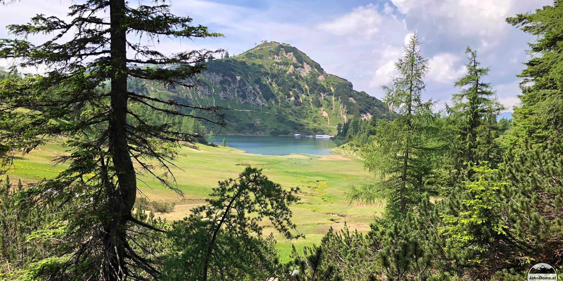 Grosssee