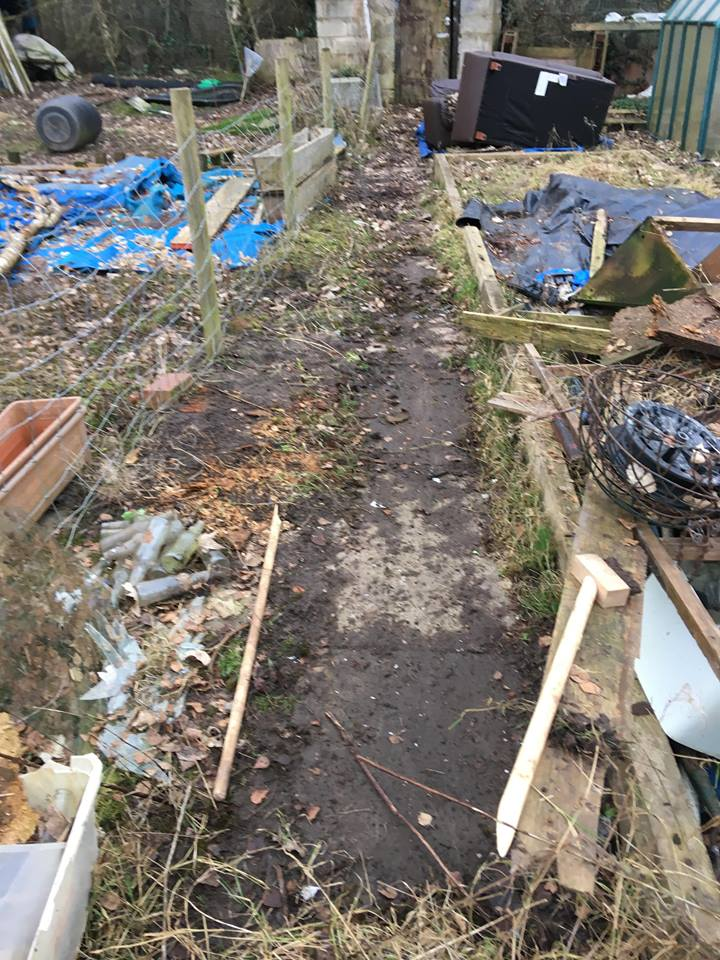 Our new allotment
