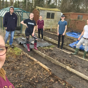 Staff and Volunteers Clear New School Allotment