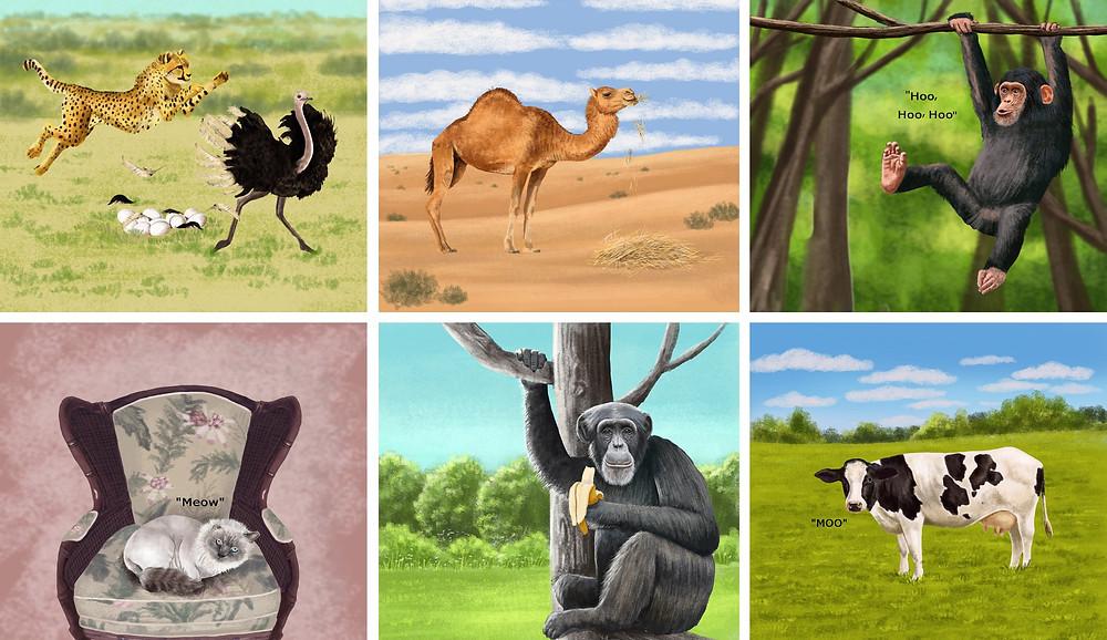 Animal illustrations by Nejla Shojaie