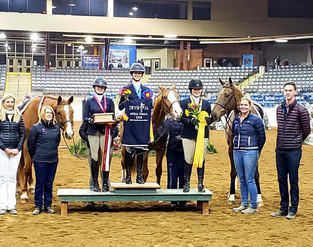 Kasey and Toby take third place in the 2018 SWVHJA Adult Amateur Medal Final