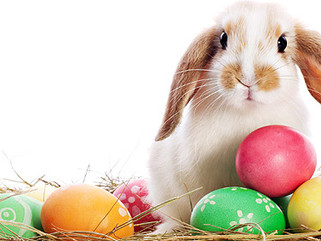 Happy Easter / Kalo Pascha to Everyone