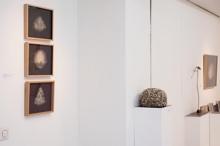Galerie Frédéric Moisan