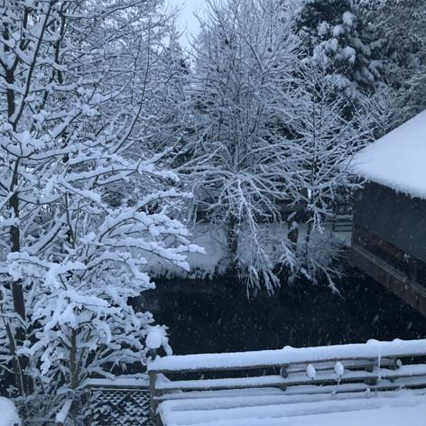Winter-e1578600048592-773x1030.jpg