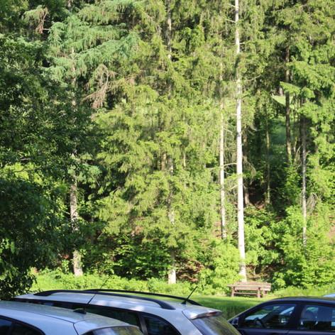 camping-27-1030x687.jpg