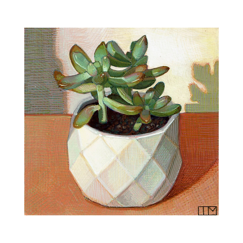 Orange and Green Succulent Glicee Print