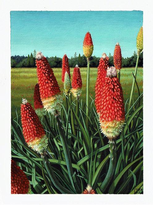 Summer in Somerset Original Painting