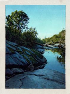"""""""Consumnes River"""""""