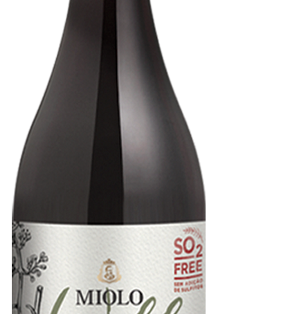 Miolo Wild Gamay 2021,o primeiro vinho do ano