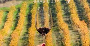 Dia dedicado aos Vinhos do Alentejo
