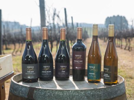 MIOLO SINGLE VINEYARDO: os vinhos que nascem da terra e brotam de vinhedos único