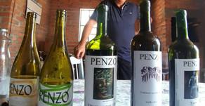 O Primeiro Encontro e Jantar de Vinhos Naturais direto com o Produtor Flávio Penzo