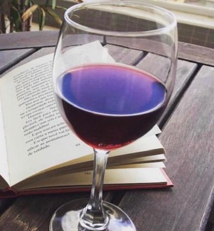 15  livros deliciosos sobre vinhos