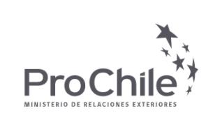 Exportação de vinho chileno ao Brasil cresce 21% nos primeiros sete meses de 2021