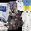 Thumbnail: Large Maxi Respirator Kit - Full Face