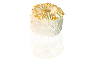 Pandan Chiffon Cake v2.png