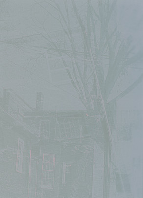 Lumen Print 3 - Temporality of Place and Perception