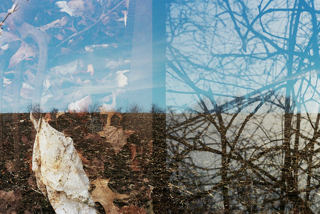 Double Exposures, January Series 3