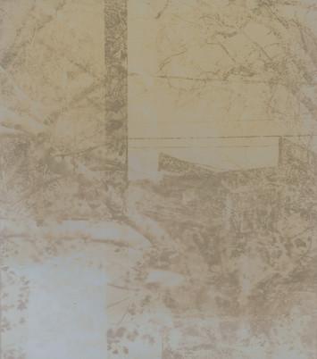 Lumen Print 6Lumen Print 3 - Temporality of Place and Perception
