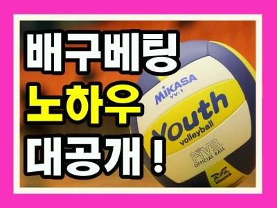 배구베팅 노하우 대공개 !