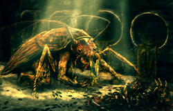 Roachlord
