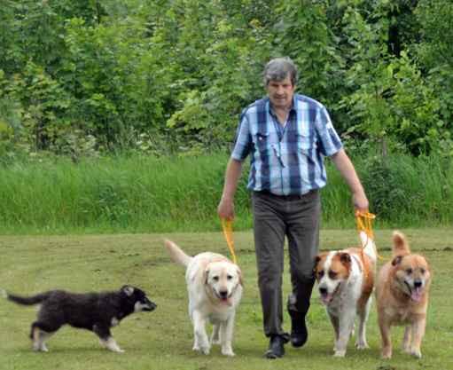 Jak spacerować z psem.