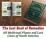 The Lost Book o Remedies