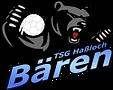 TSG_Handball_Logo_125px.png