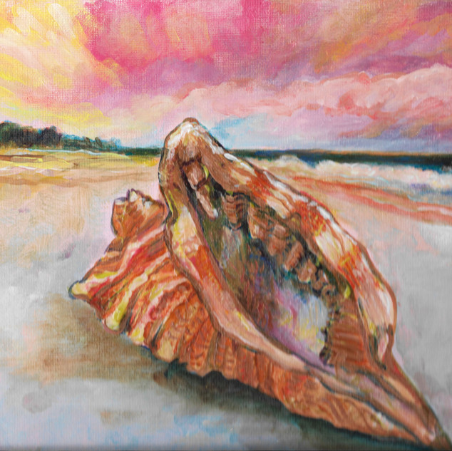 Pink Seashell