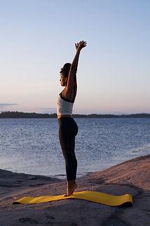 pilates posture.JPG