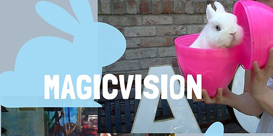 MagicVision Bunny.jfif