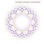 SAHASWARA Crown chakra - Multi Cultural Music - Sitar Song Writing - Eastern Fusion Music