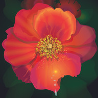 Flower created with Illustrator