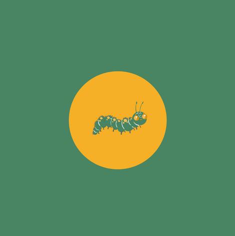 Metamorphosis Journey Caterpillar - PFNO