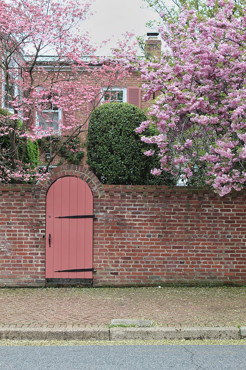 Pink Gate, Old Town Alexandria