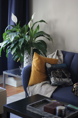 Add texture with plants and lighting, not just fabrics
