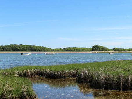 City Escape: Mattapoisett, MA