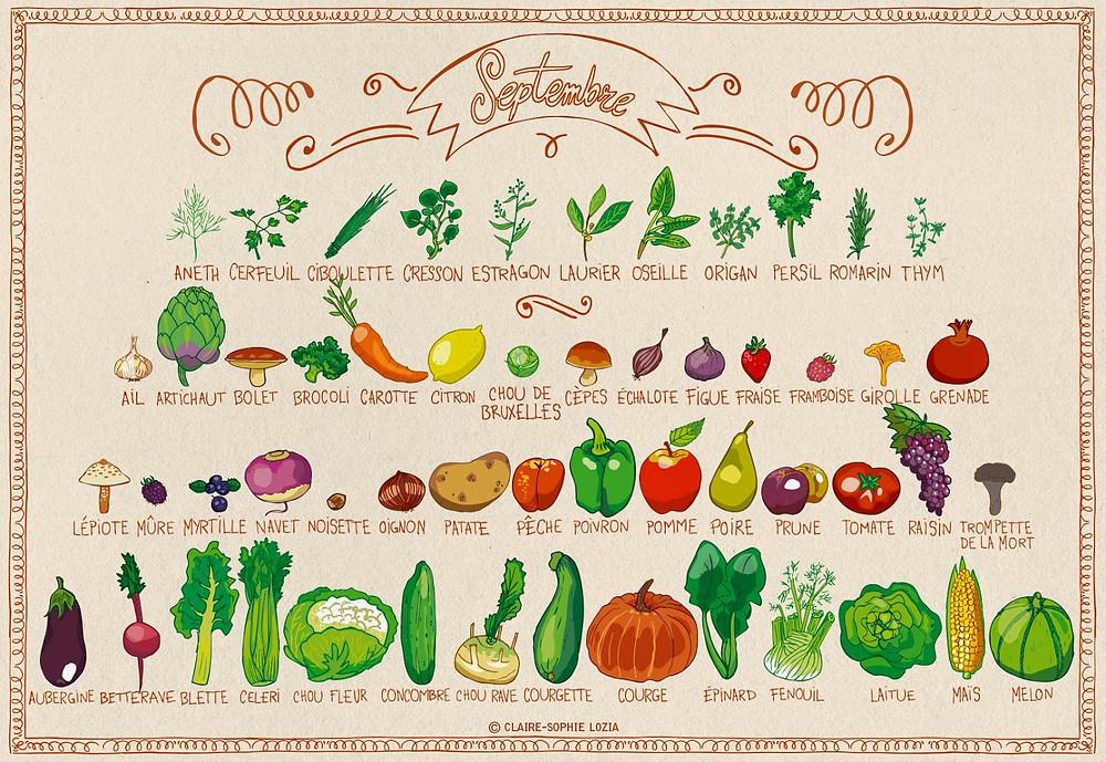 Liste des fruits et légumes, disponible au mois de septembre.