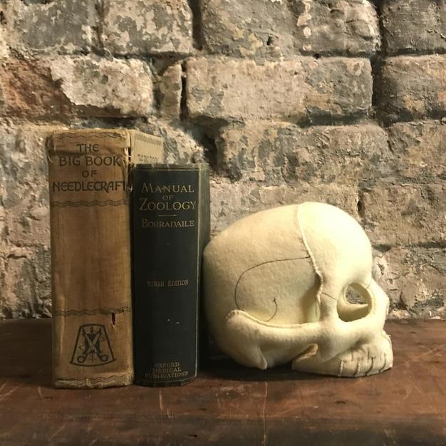 Human Skull Bookend
