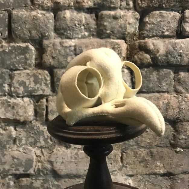 Giant Tawny Owl Skull