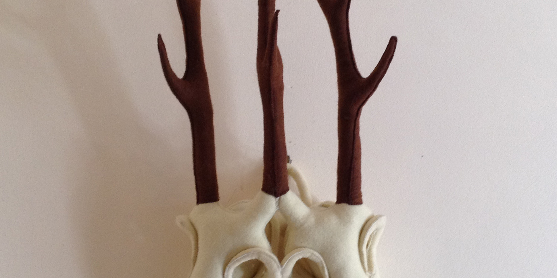 Two Headed Deer Skull