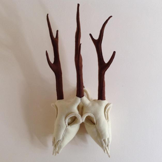 Two Headed Deer Skull