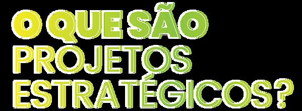 Projetos Estratégicos-05.png