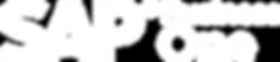 SAP_BOne_R_neg2.png