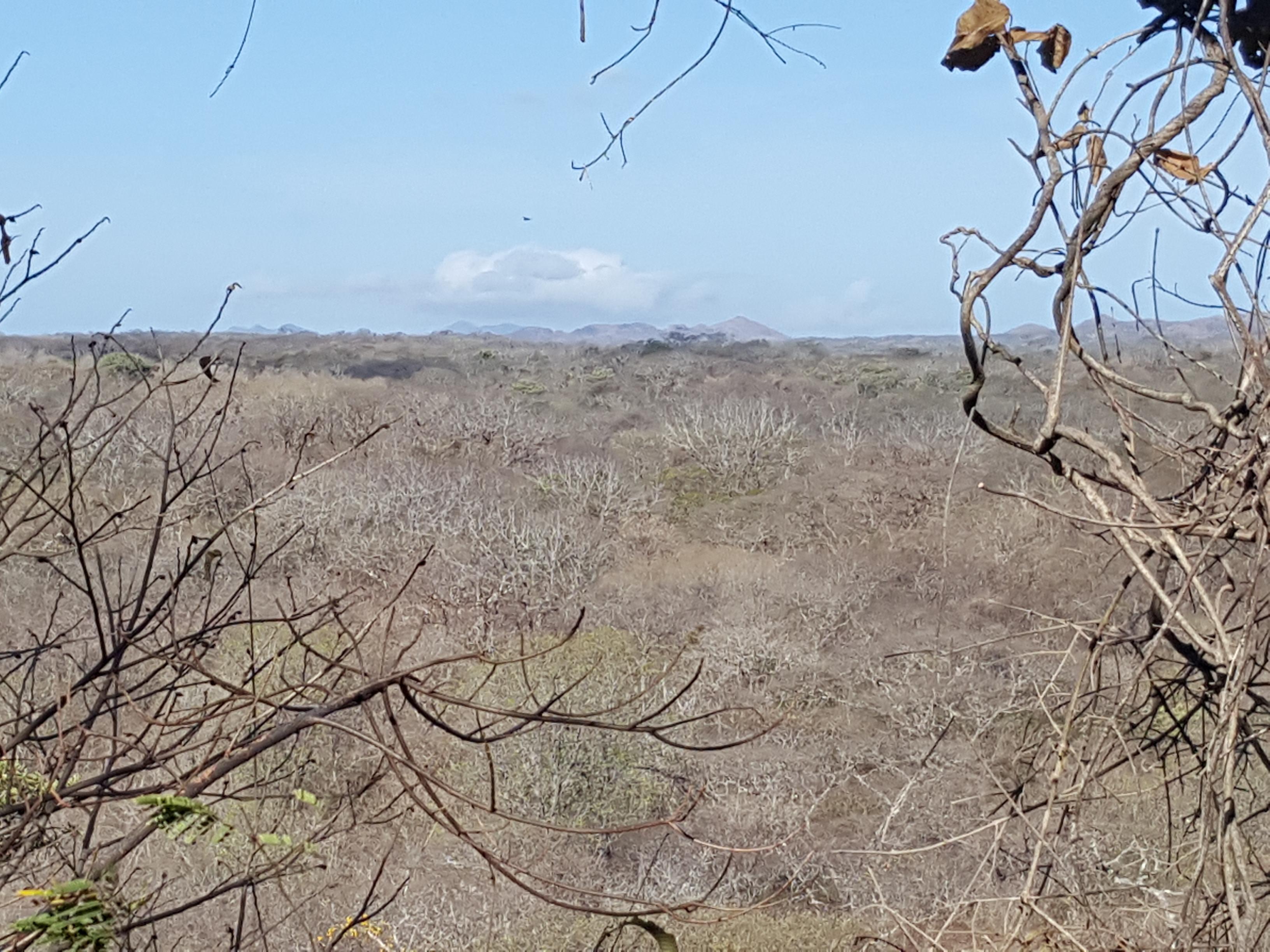 Área de Conservación Guanacaste
