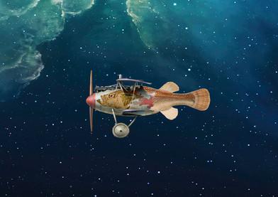 Air Fish - 2