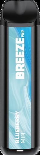 Breeze Problueberry mint v3_2x.png