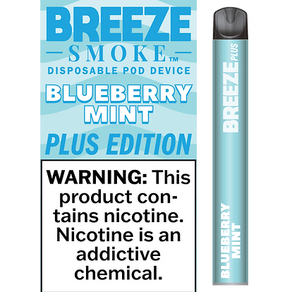 Blueberry Mint - 5% NIC