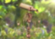 Tx392Vpb-pic.jpg