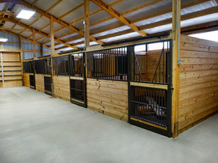 Horse Stalls: For Beginners